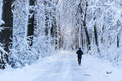 bieganie zimą w lesie